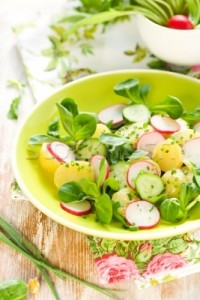 1335350643_154673_stock-photo-potato-salad-with-radishes