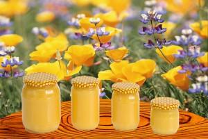 Kyiv honey