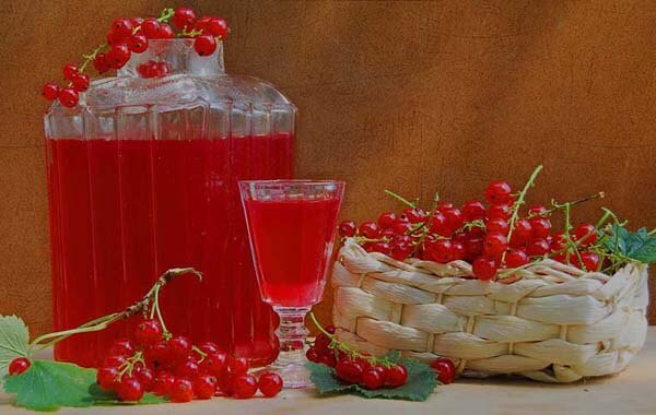 recepti-iz-krasnoi-smorodini02