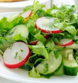 Cucumber, Radish, and Ramson Salad