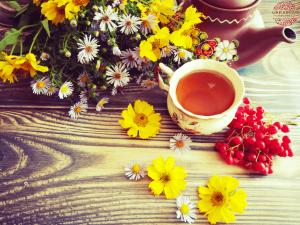 Autumn tea with herbs